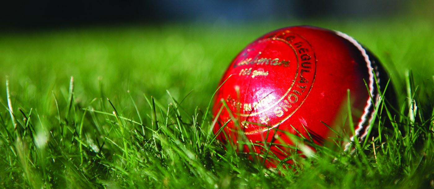 cricket ball banner